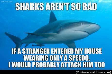 Speedo Shark